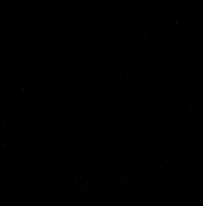 Mammoth logo SnowJam