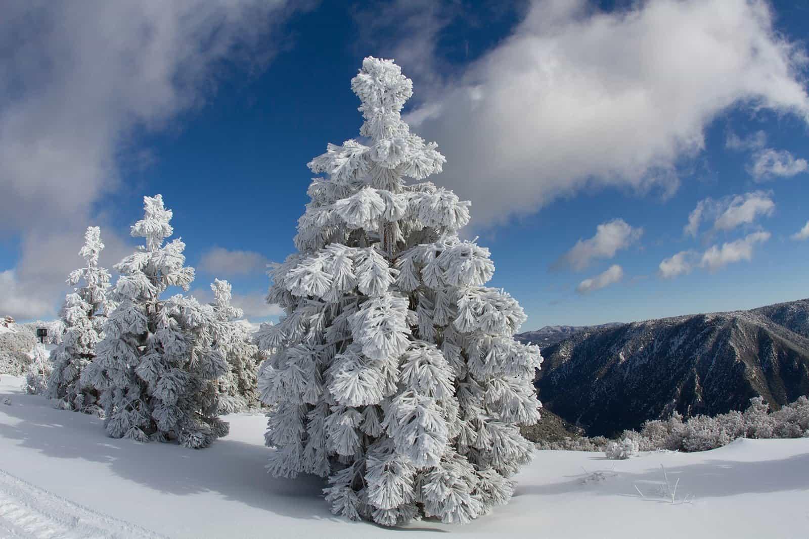 snow-valley-4